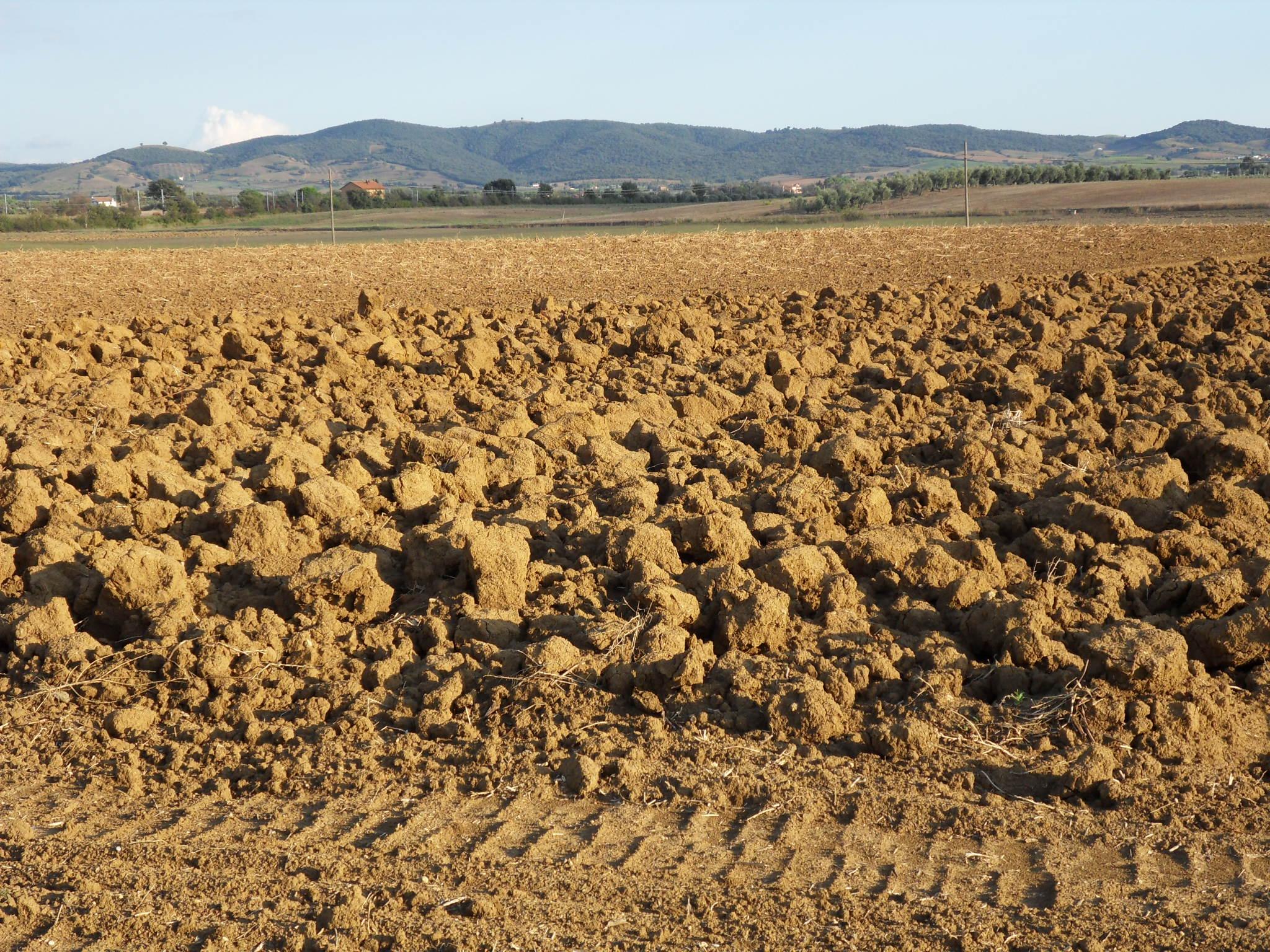 Blogs italiano e english naturedesigns john and franci for Soil in english