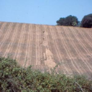 sardenia erosion ploughing