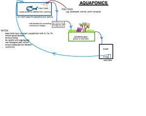 aquaponics system diagram