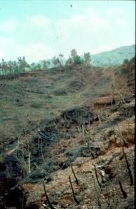 tons-erosion